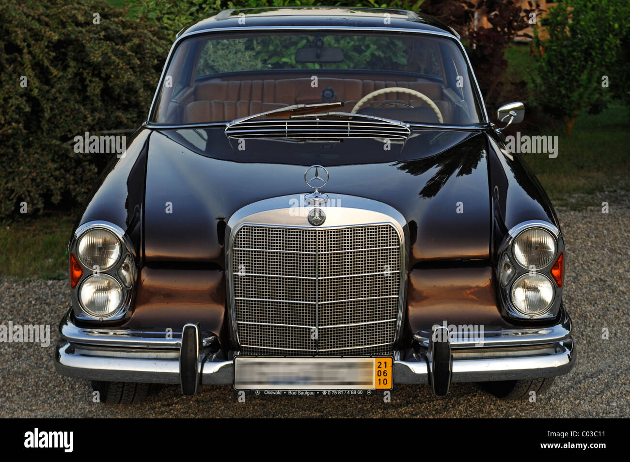 Classic car, front view of a Mercedes 250 SE, built 1962-65, 110 kW, 150 hp - Stock Image