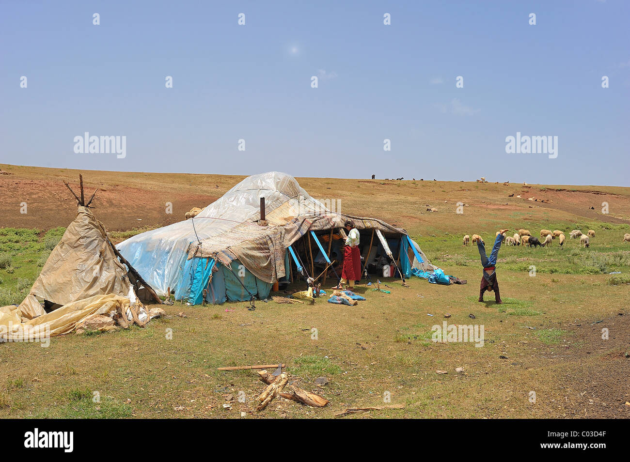 Nomad's tent covered with plastic sheeting against the rain, nomad boy doing a handstand, Middle Atlas, Morocco, - Stock Image