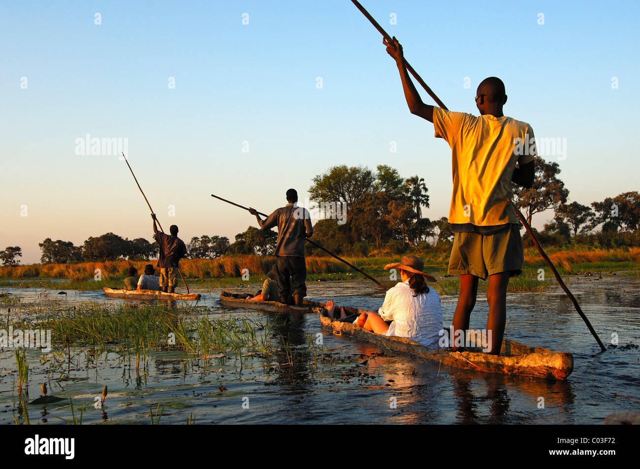 Punters with tourists in the traditional Mokoro dugout canoes on excursion in the Okavango Delta, Botswana, Africa - Stock Image