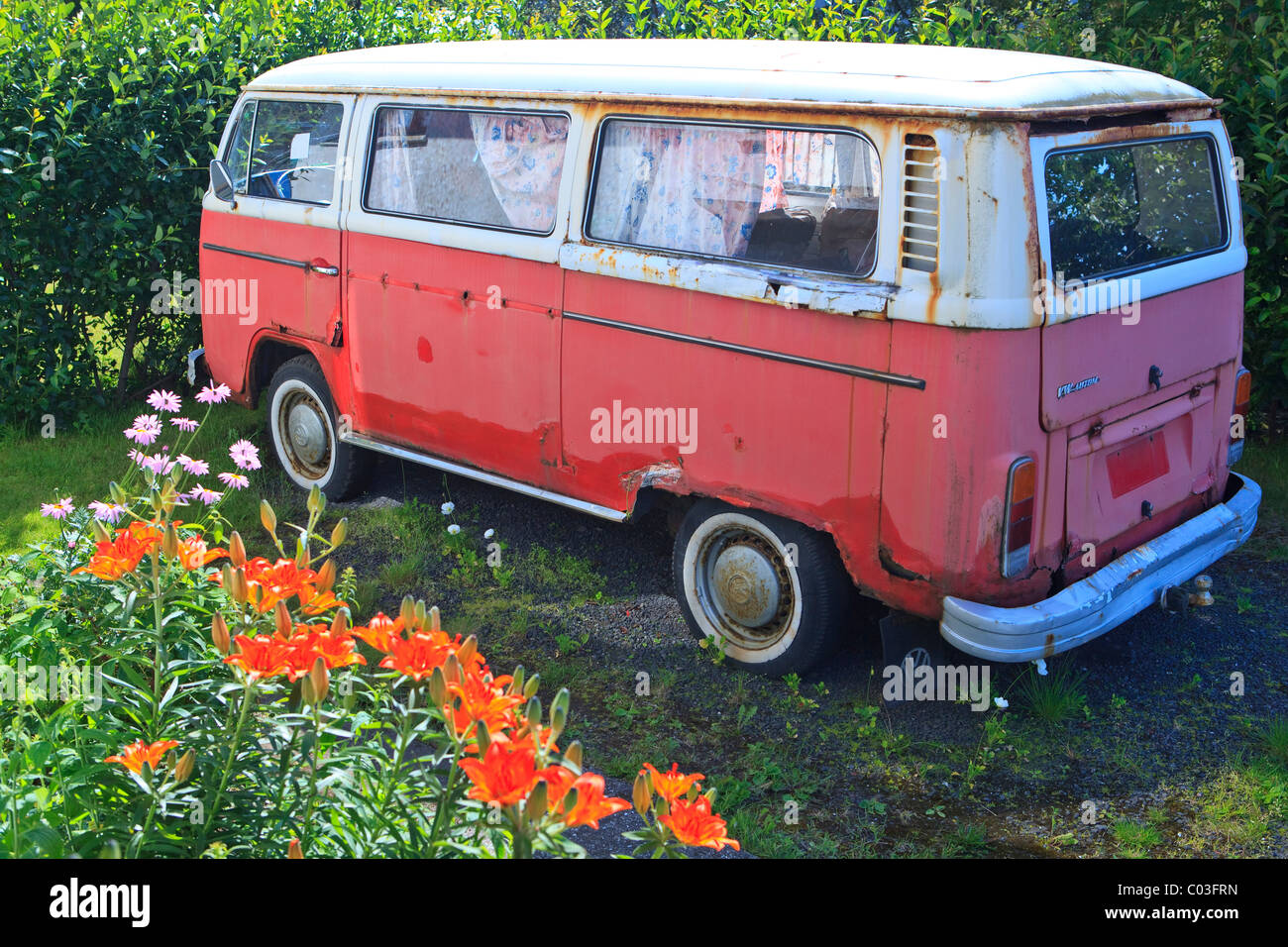 Old red and white VW bus, Reykjavik, Iceland, Europe - Stock Image
