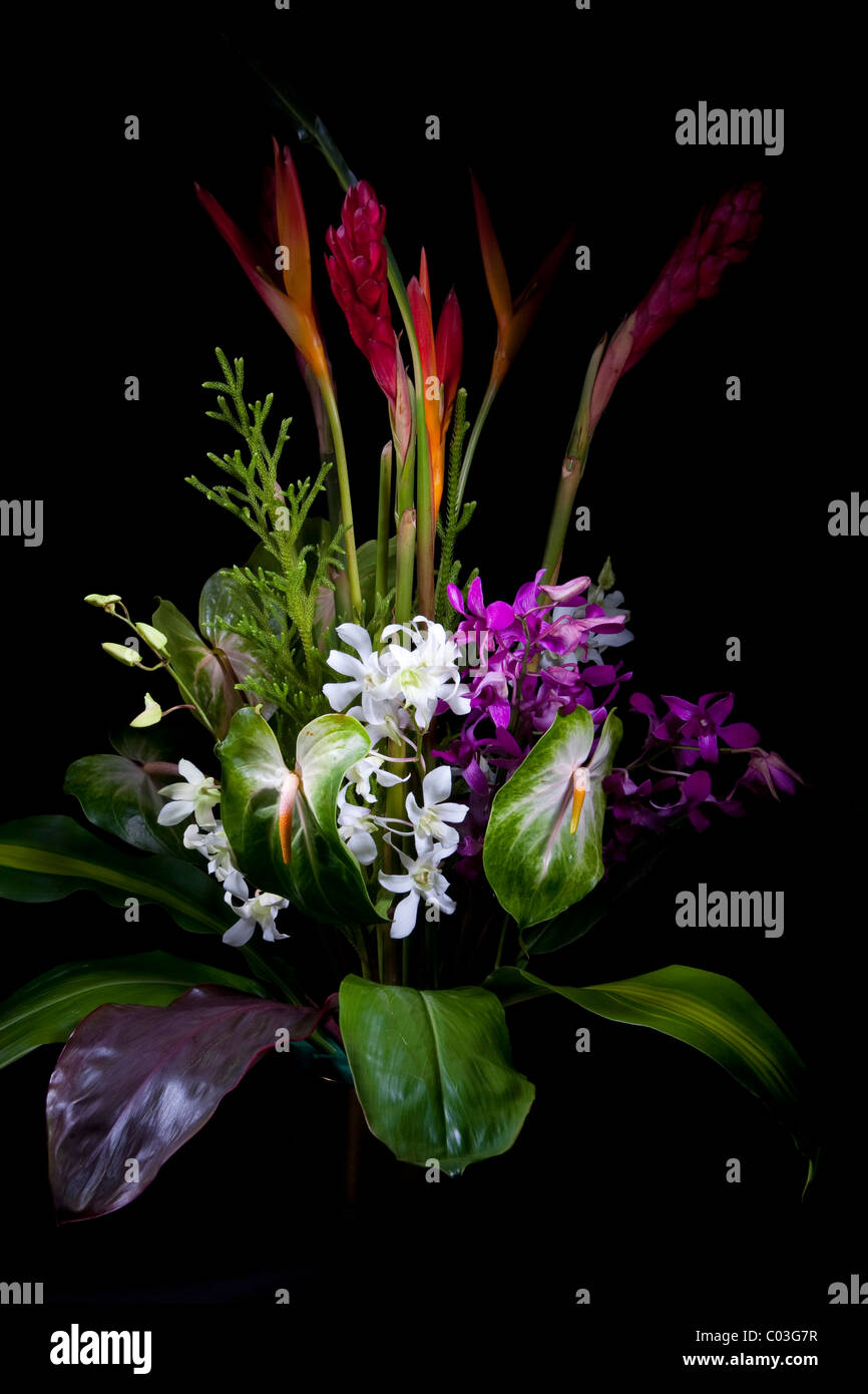 Tropical flower bouquet on a black background Stock Photo: 34499355 ...
