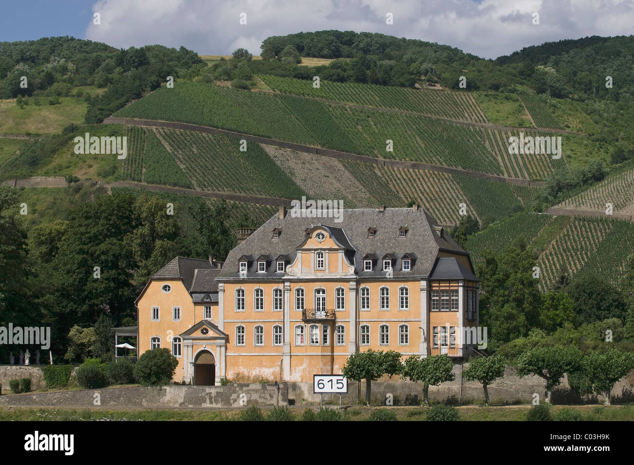 Schloss Marienburg, baroque palace in front of vineyards, Leutesdorf, Rhine River, Rhineland-Palatinate, Germany, - Stock Image