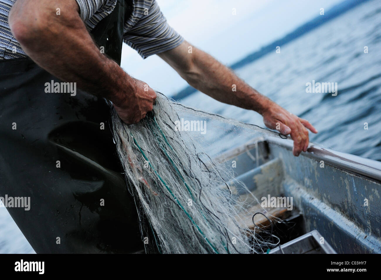 The fisherman Johann Strobl casting for fish on Lake Starnberg, Fuenfseenland area, Upper Bavaria, Bavaria, Germany, - Stock Image