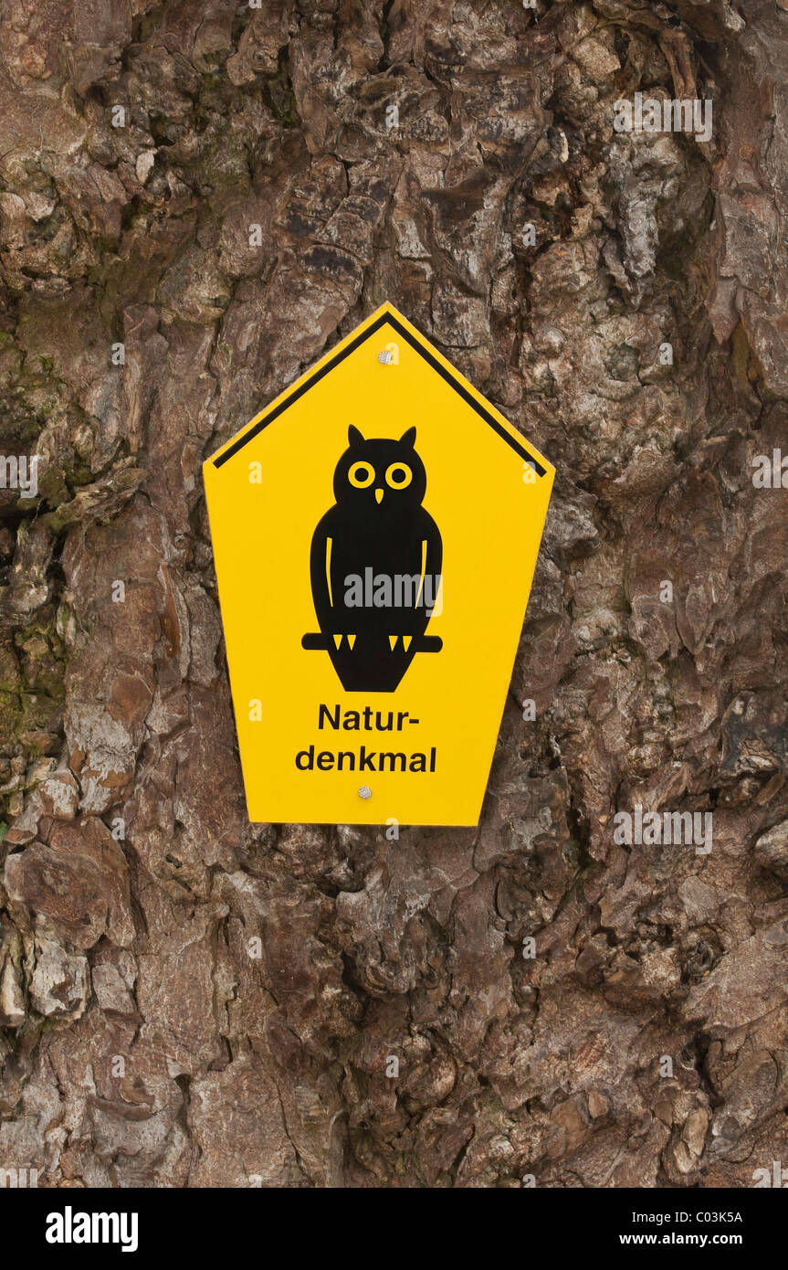 Natural monument sign on a gnarled tree trunk, Horse-Chestnut (Aesculus hippocastanum) - Stock Image