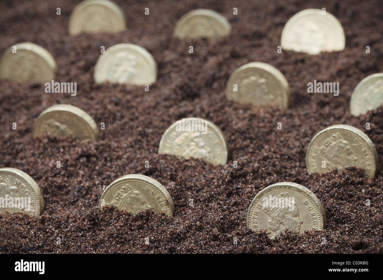 British pound coins 'growing' in soil - Stock Image