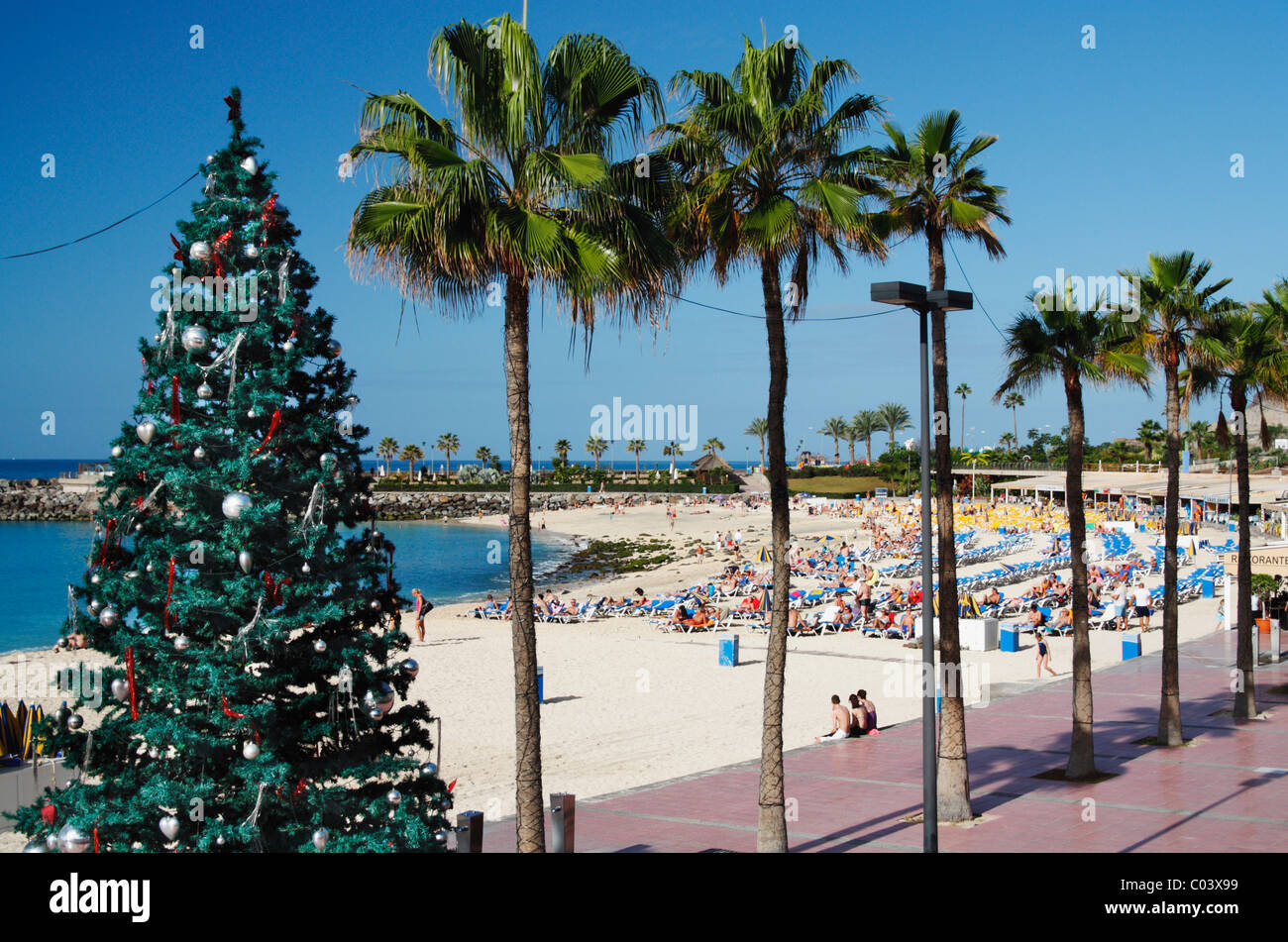christmas tree on playa de amadores beach near puerto rico gran canaria canary islands - Christmas In Puerto Rico