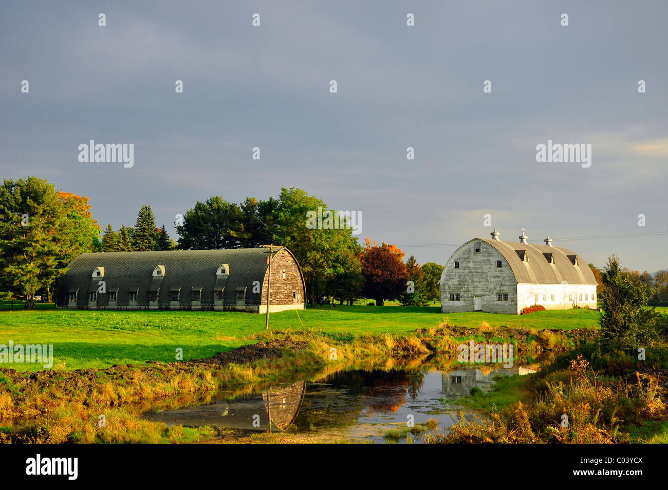 Two old barns in front of a small pond, Montgomery County, Upstate New York. - Stock Image