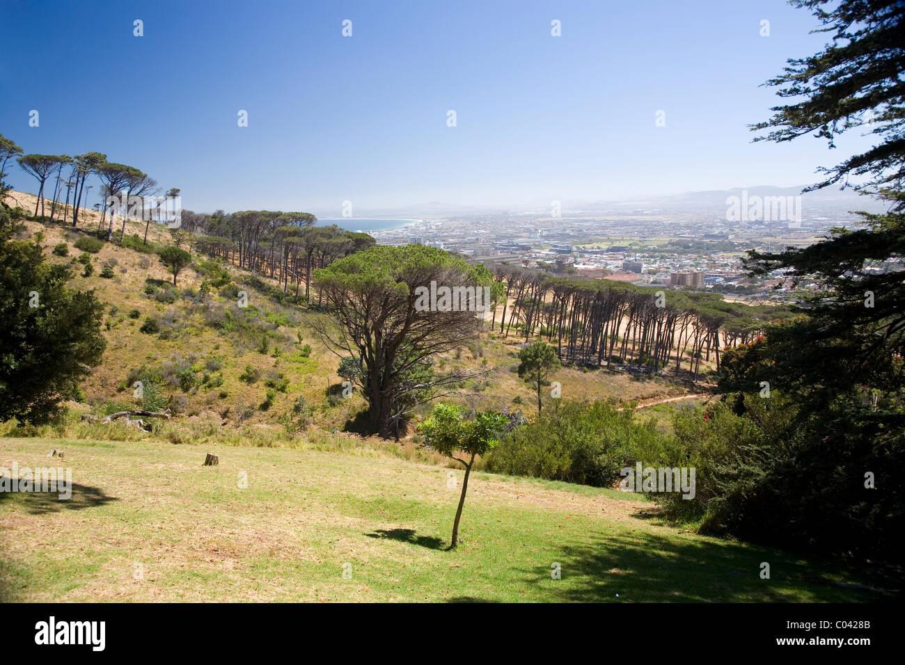 Slopes of Devils Peak viewed from Rhodes Memorial - Stock Image