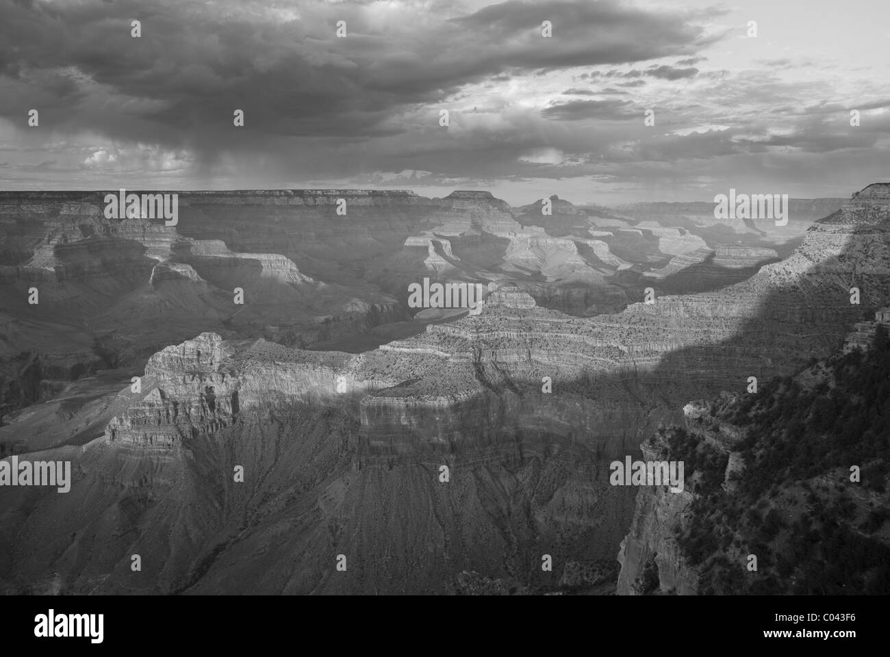 Grand Canyon National Park - Stock Image
