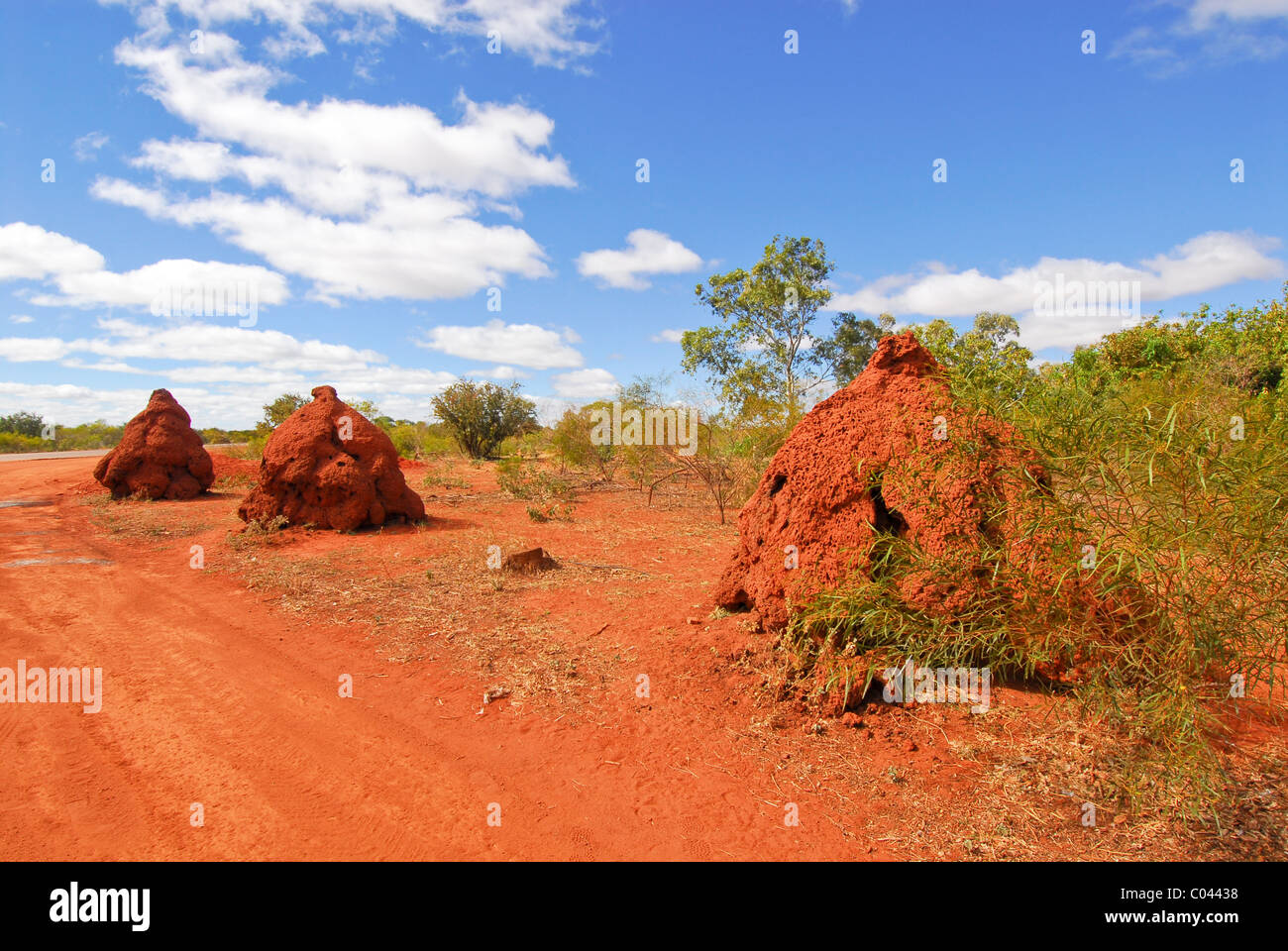 Termite Mounds In Western Australia Stock Photo Alamy