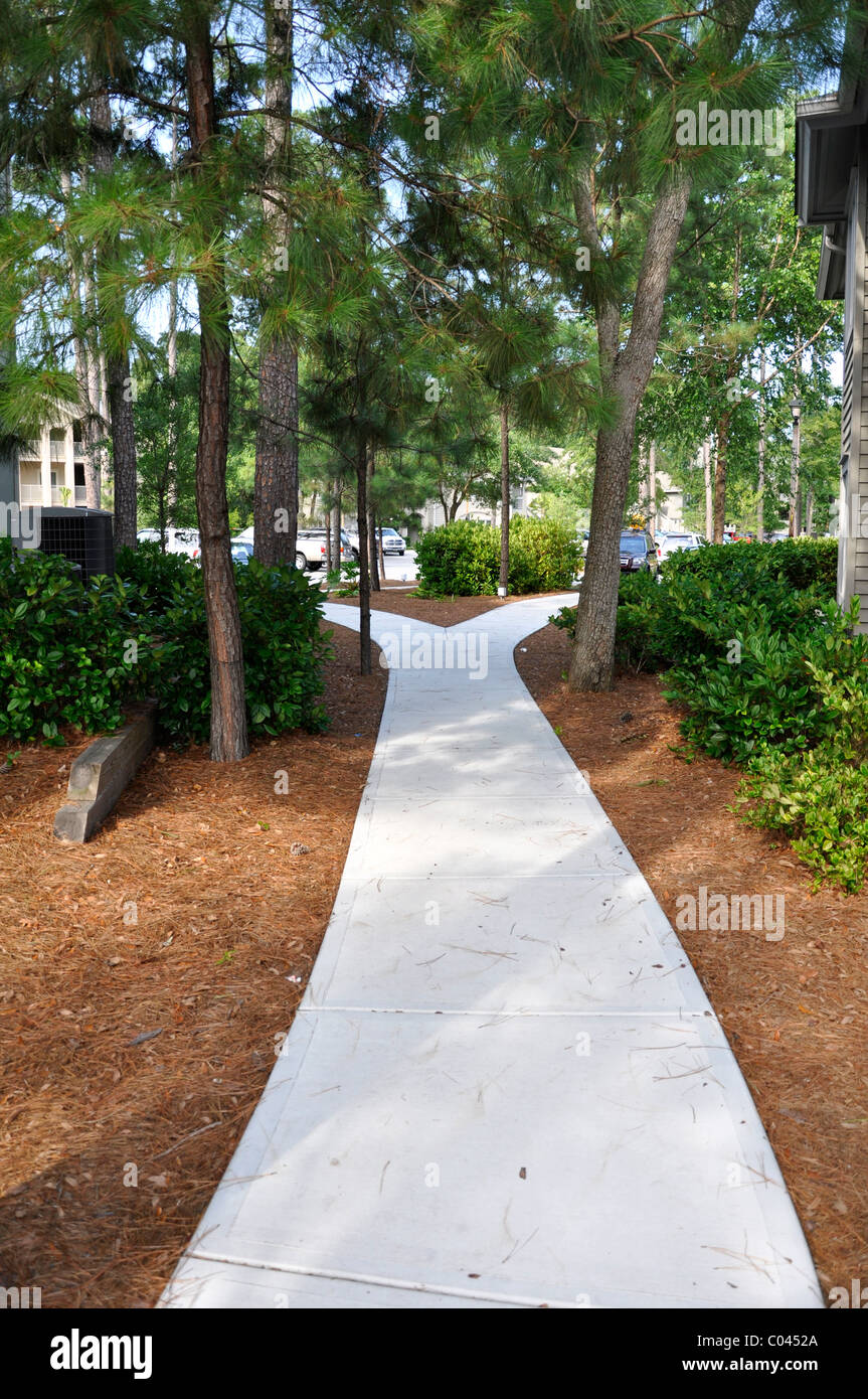 Shade covered concrete sidewalk at a vacation resort.  The sidewalk has evergreen trees growing by it - Stock Image