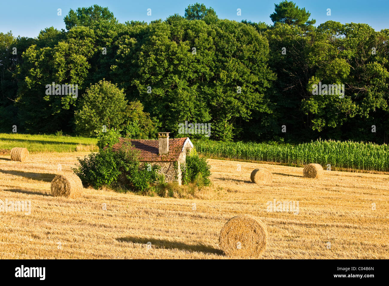 Typical stone barn in wheat field in the Dordogne, France - Stock Image