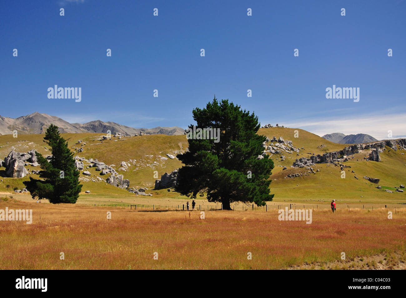 Castle Hill Rocks, Castle Hill High Country Station, State Highway 73, Canterbury Region, South Island, New Zealand - Stock Image