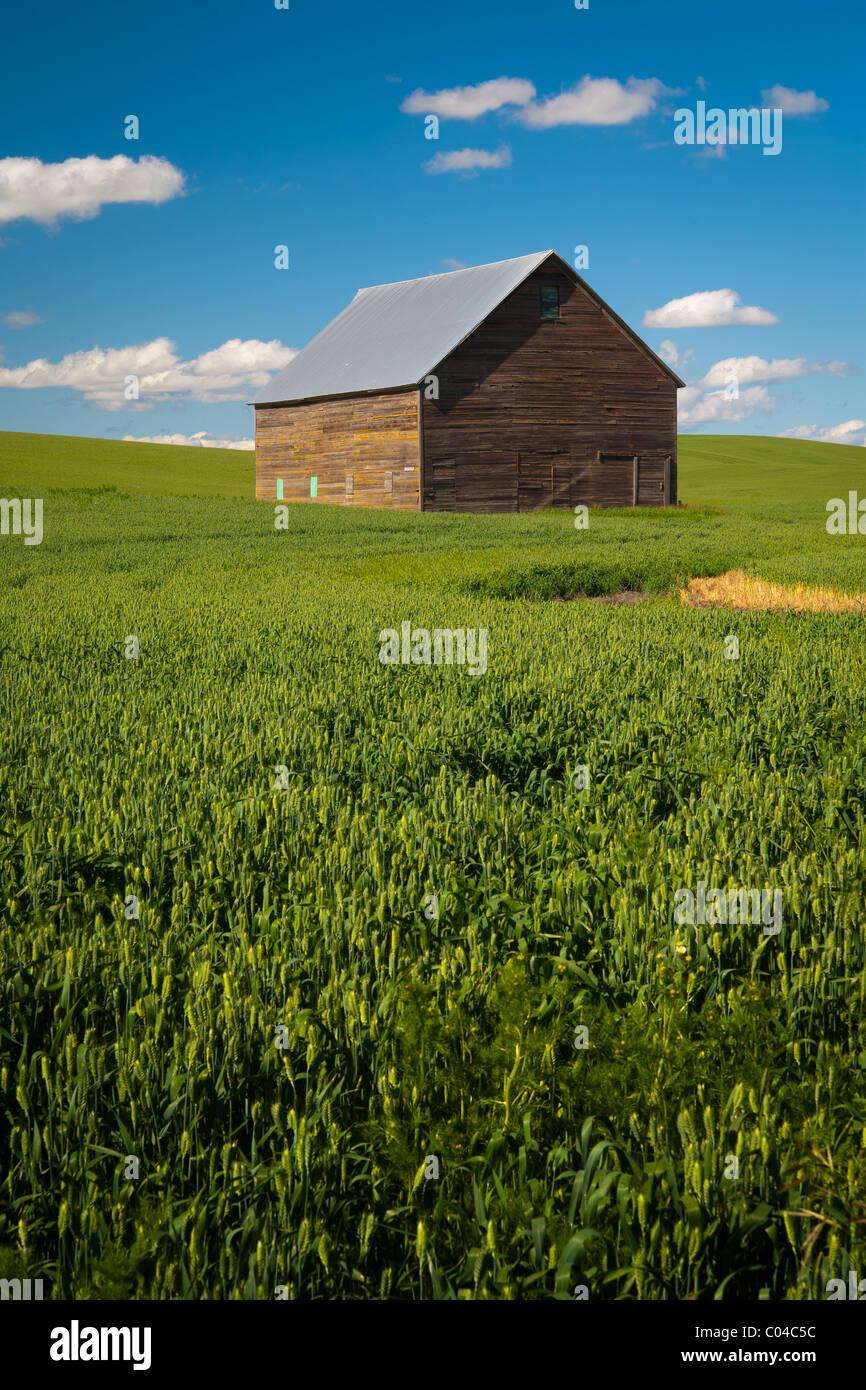 Farm bulding in the Palouse region of eastern Washington state, USA - Stock Image