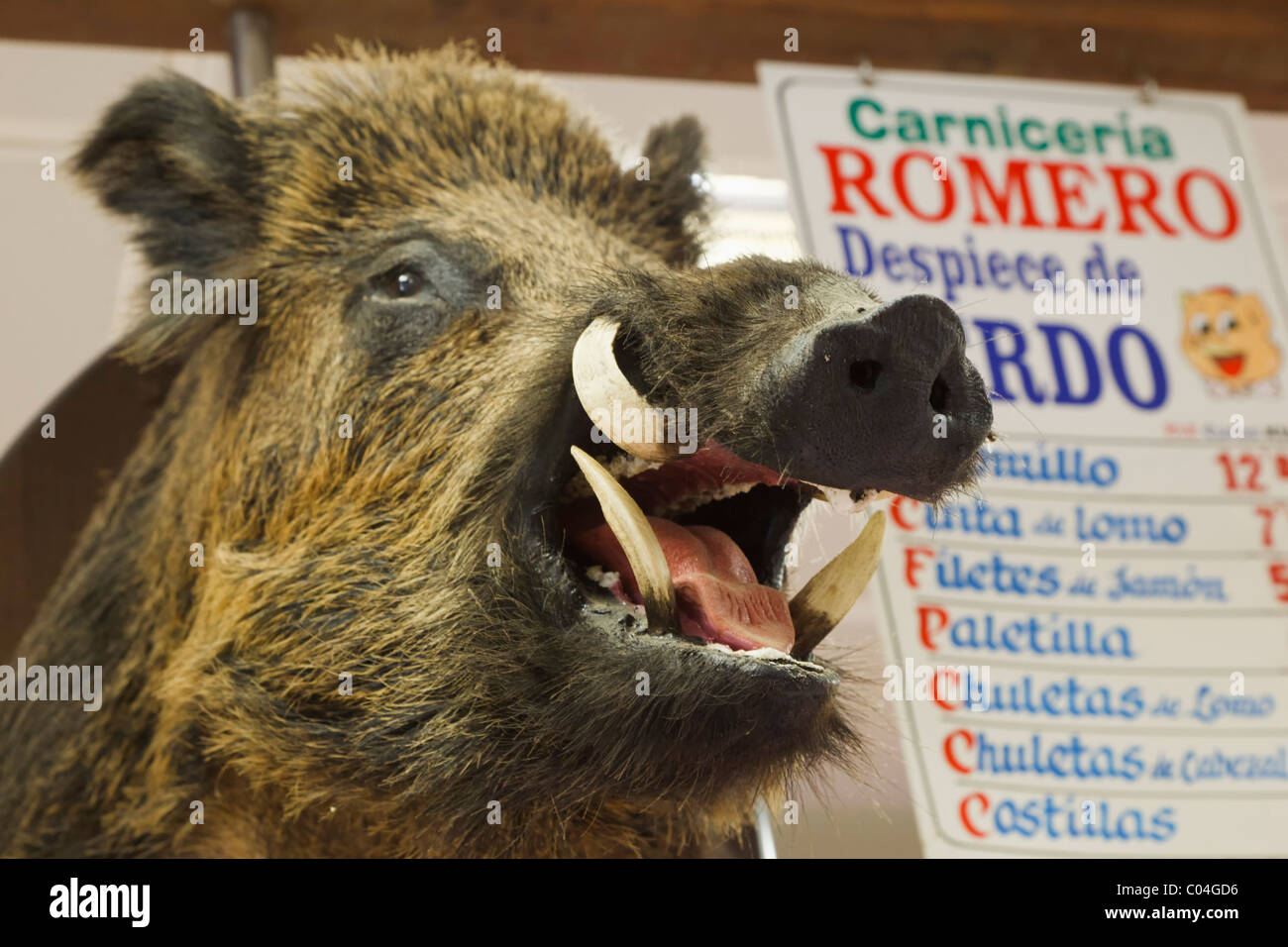 Stuffed wild boar's head at butcher's stall in municipal market. Los Boliches, Fuengirola, Spain - Stock Image