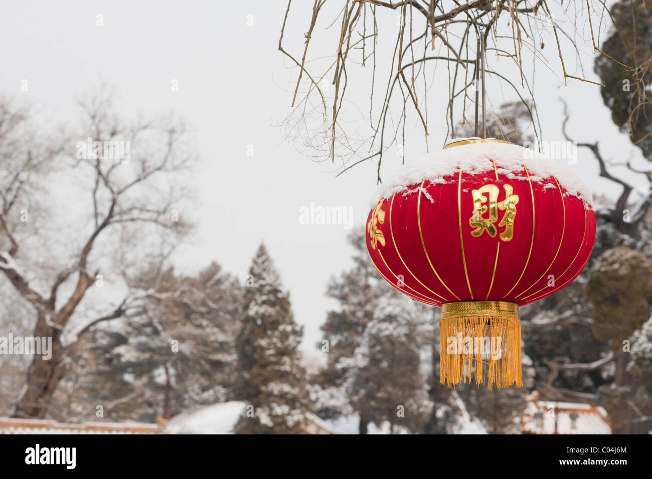 A red lantern with the character 'fu', happiness, for the Chinese New Year (rabbit) 2011 after snowfall - Stock Image