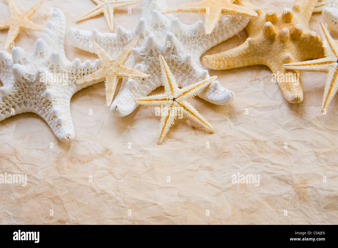 Background made up of starfish and old paper. - Stock Image