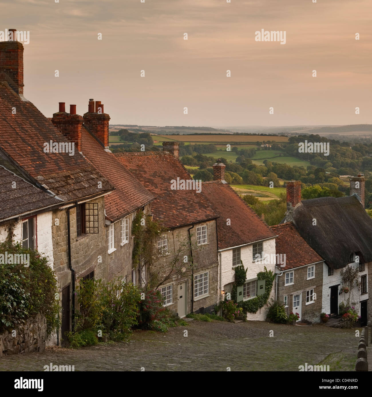 A warm end to a late summer's day at Gold Hill in Shaftesbury Dorset. Old England at its best. - Stock Image