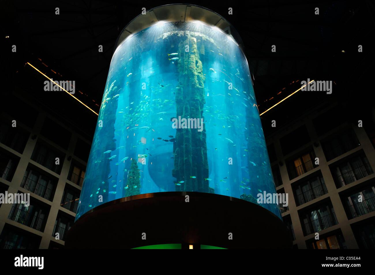 Fish aquarium at 5 stars Radisson SAS Hotel Berlin, the world's largest cylindrical aquarium, Berlin Germany - Stock Image