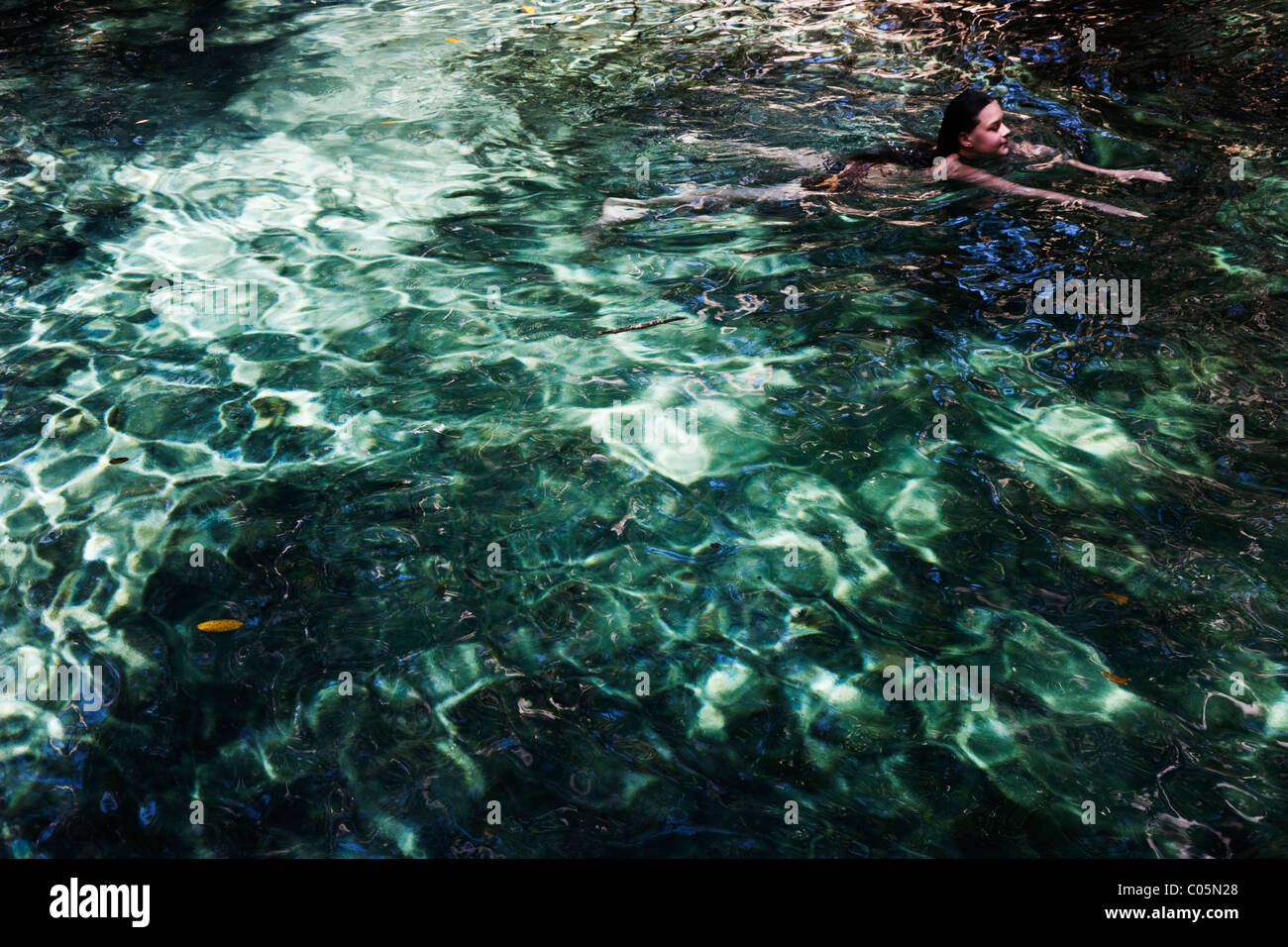Swimming in a limestone cenote, or water filled cavern, a uniquely Yucatecan geological feature, Mexico - Stock Image