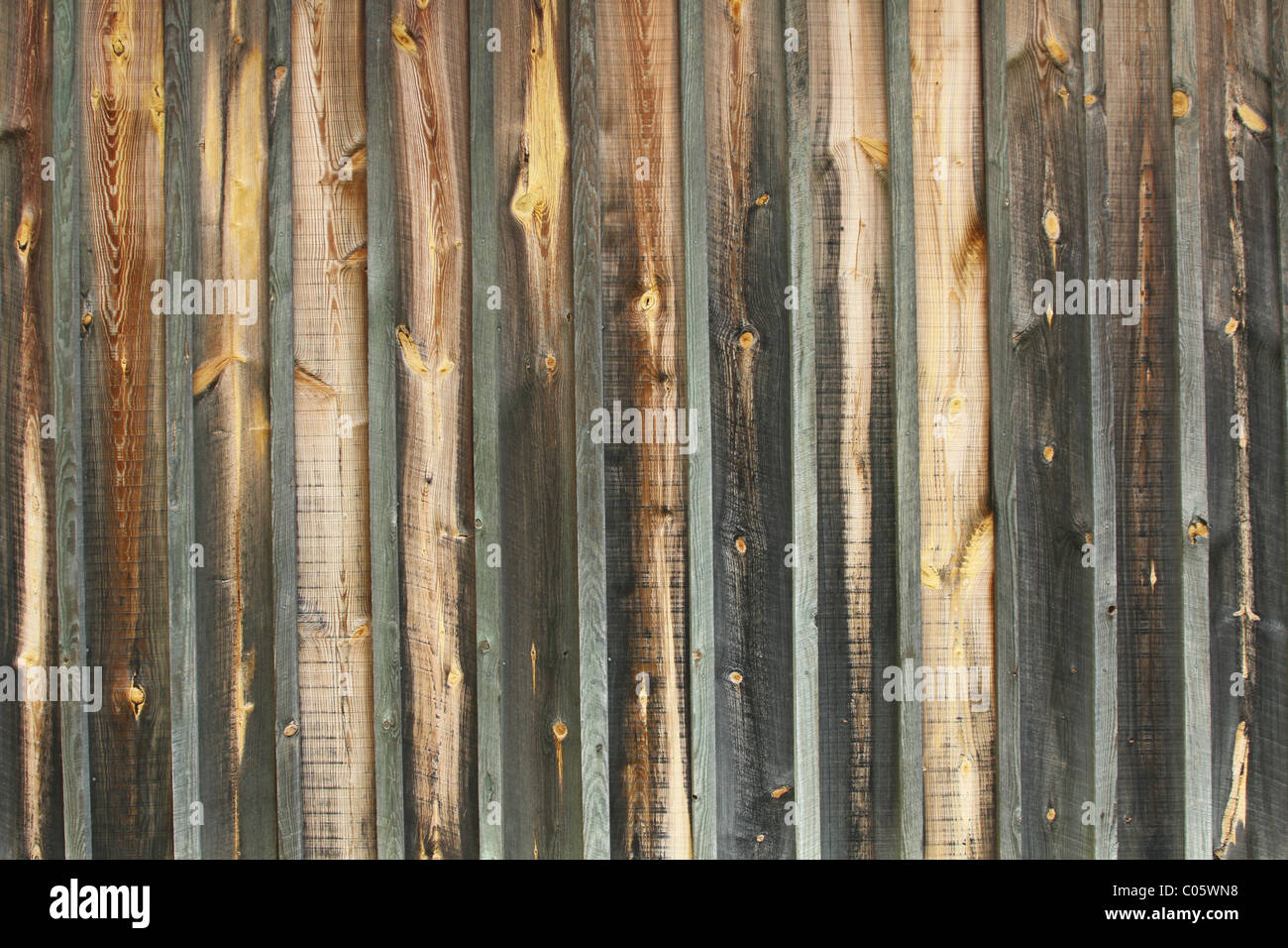 Wood Barn Siding Texture. Board siding with wood strips covering the joints. - Stock Image