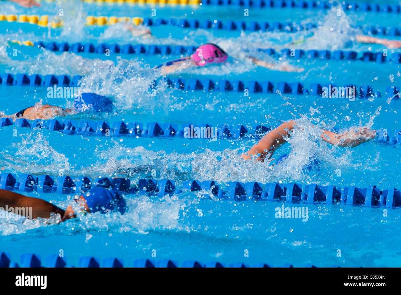 Girls freestyle swimming competition - Stock Image