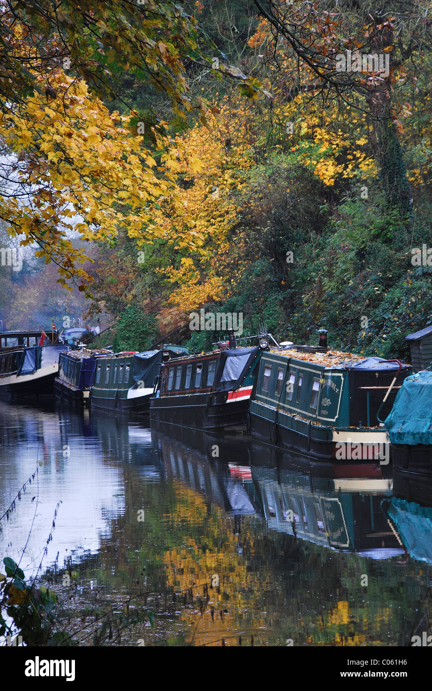 Narrow boats at Pewsey Wharf moored amidst the Autumn colour  Wiltshire, UK November 2011 - Stock Image