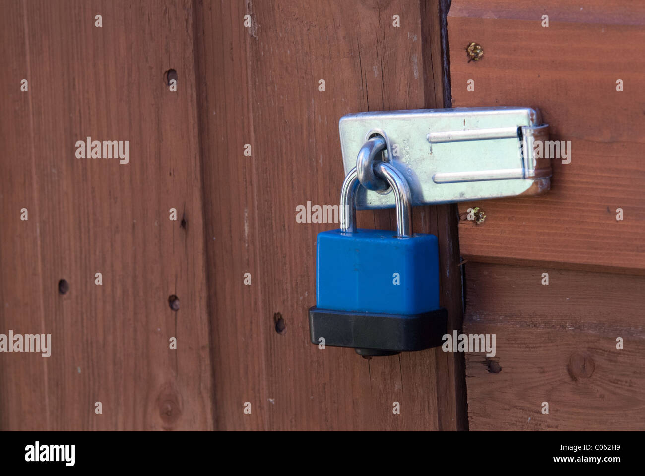 A plastic-coated padlock on a shed door. Padlocks are useful to deter casual thieves. & A plastic-coated padlock on a shed door. Padlocks are useful to ...