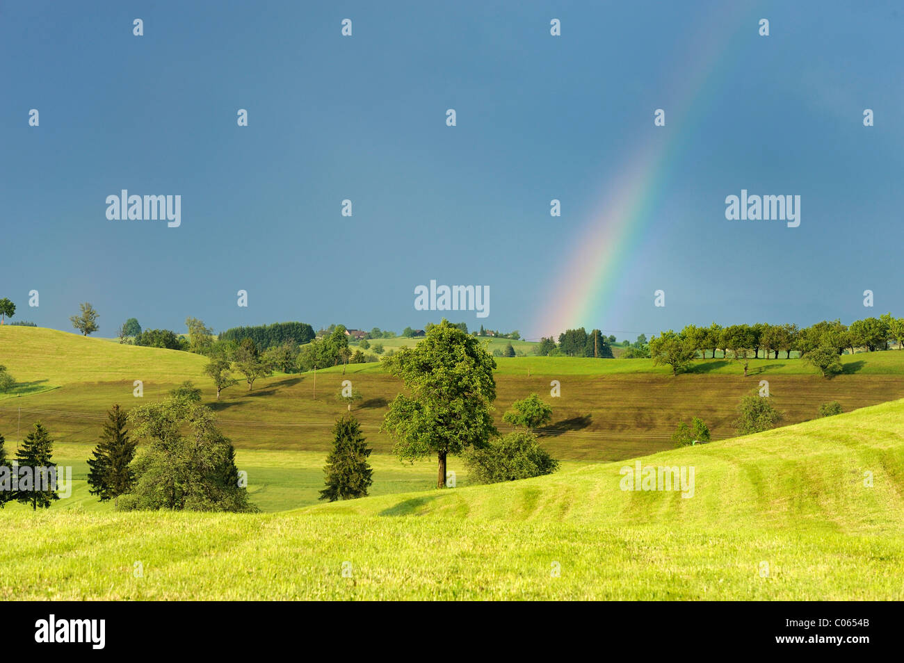 Cultural landscape in the Swiss Mittleland with a rainbow, Zug, Switzerland, Europe - Stock Image