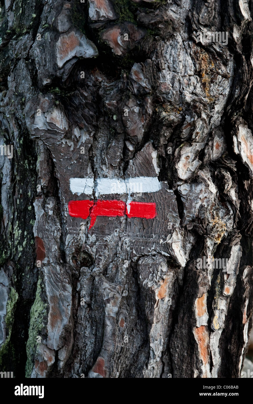 A sign for one of the major walks, Grand Randonnee, across France. The sign, on a pine tree,is red and while - Stock Image
