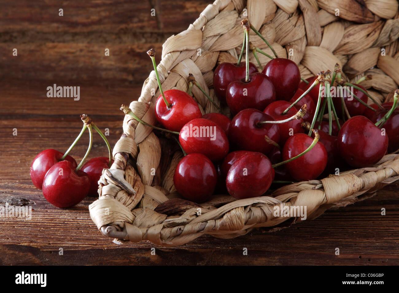 Cherries (Prunus) in a wicker basket on rustic wood - Stock Image