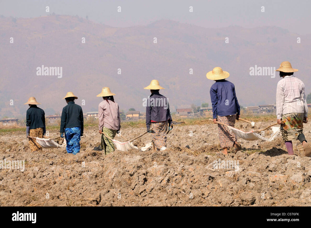 Female field workers loaded clods of earth on basic handbarrows with their bare hands, now transporting the soil - Stock Image