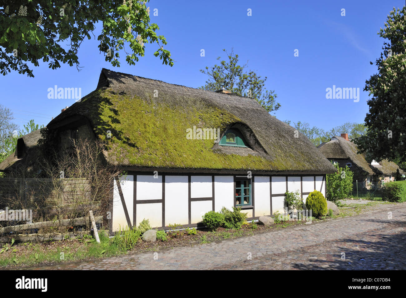 Traditional Low German-built hall house in a village street at Sagard, Ruegen island, Mecklenburg-Western Pomerania - Stock Image