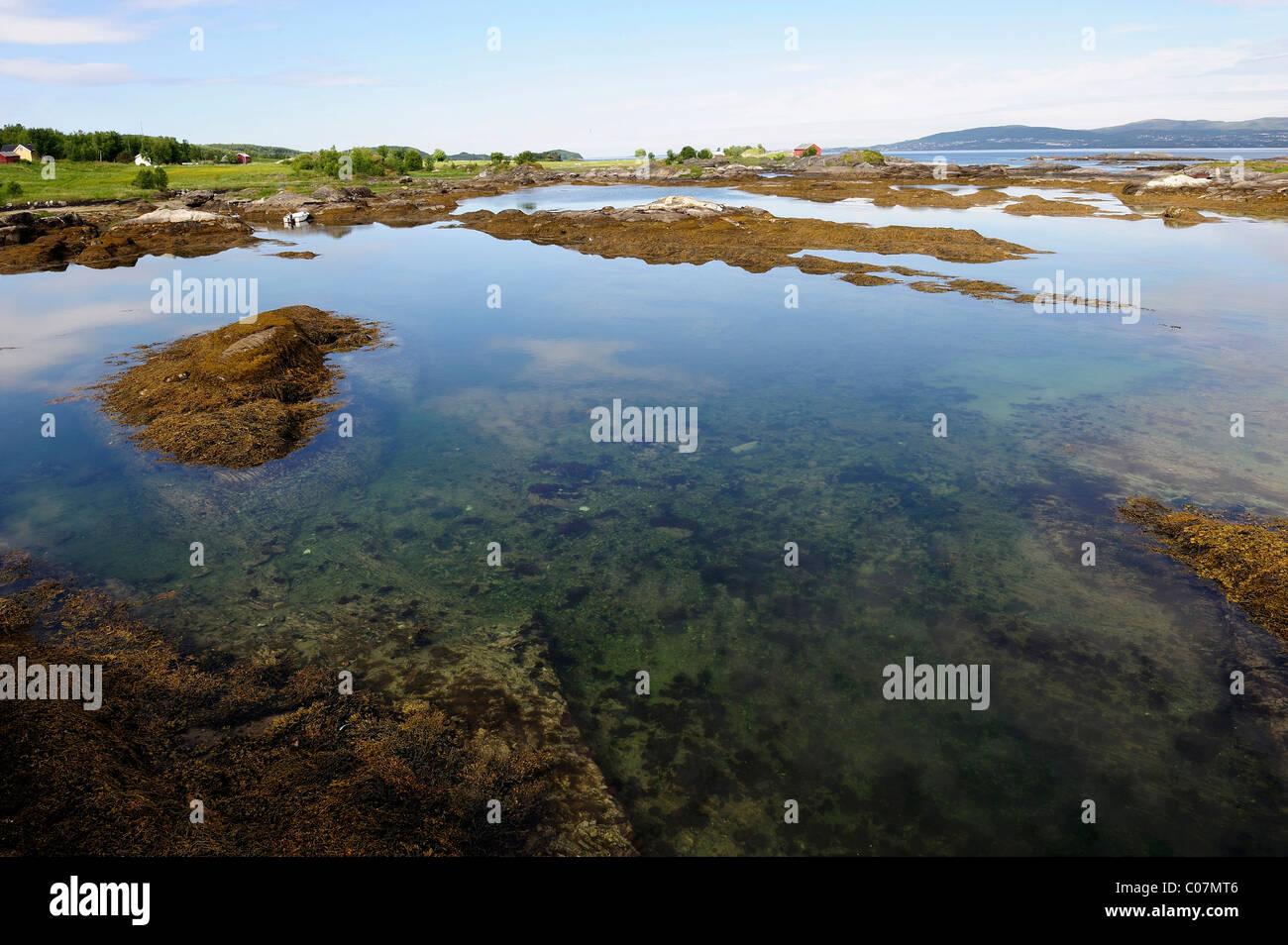 On the RV 17 coast road, Northern Norway, Norway, Scandinavia, Europe - Stock Image