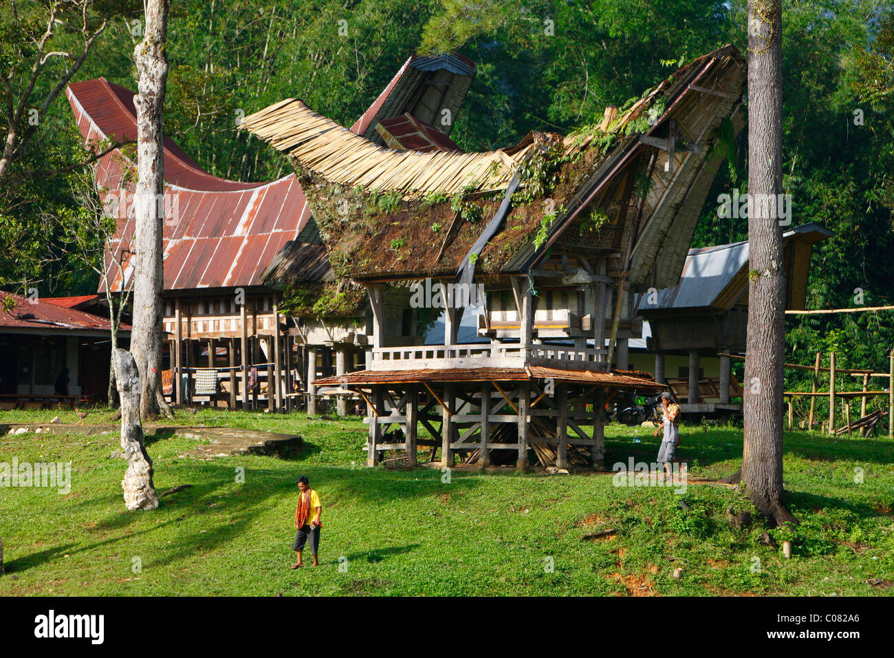Typical Toraja house, Kete Kesu, Toraja culture, Sulawesi, Indonesia, Asia - Stock Image