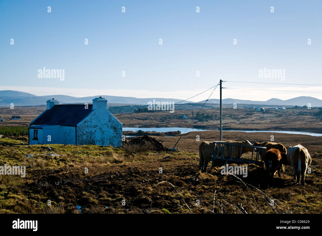 Small farm in rural Ireland - Stock Image