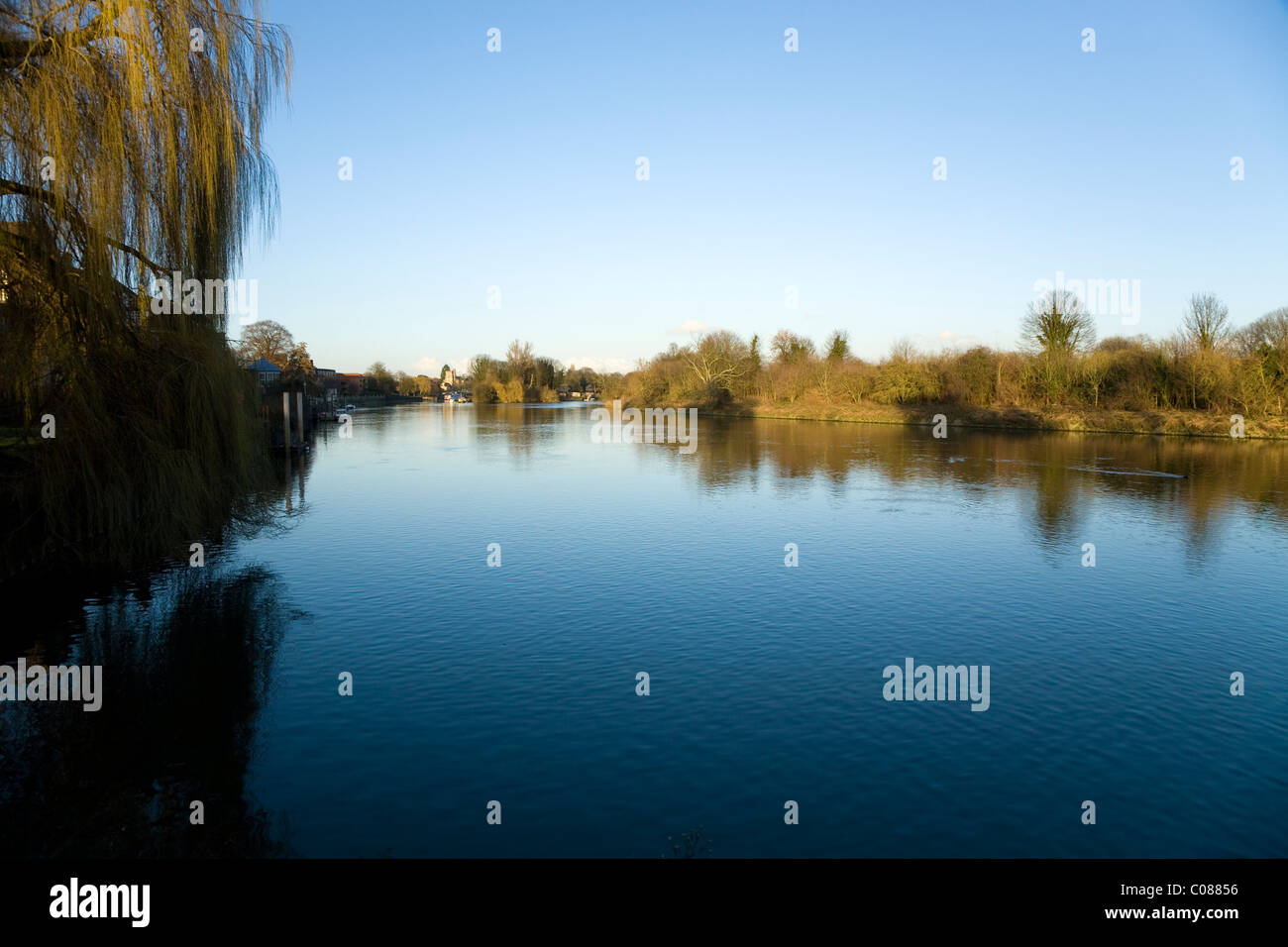 The River Thames – looking east – seen from river bank at Radnor Gardens in Twickenham. Middlesex / Middx. UK. - Stock Image