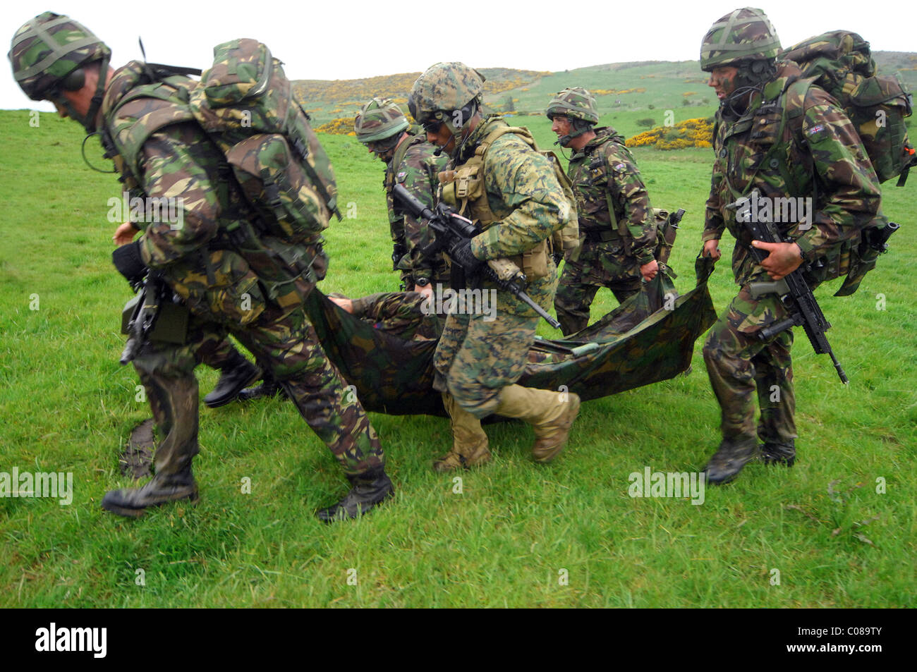 JOINT WARRIOR 09-1 is a major exercise involving all three UK services and 12 invited NATO and Allied Nations. - Stock Image