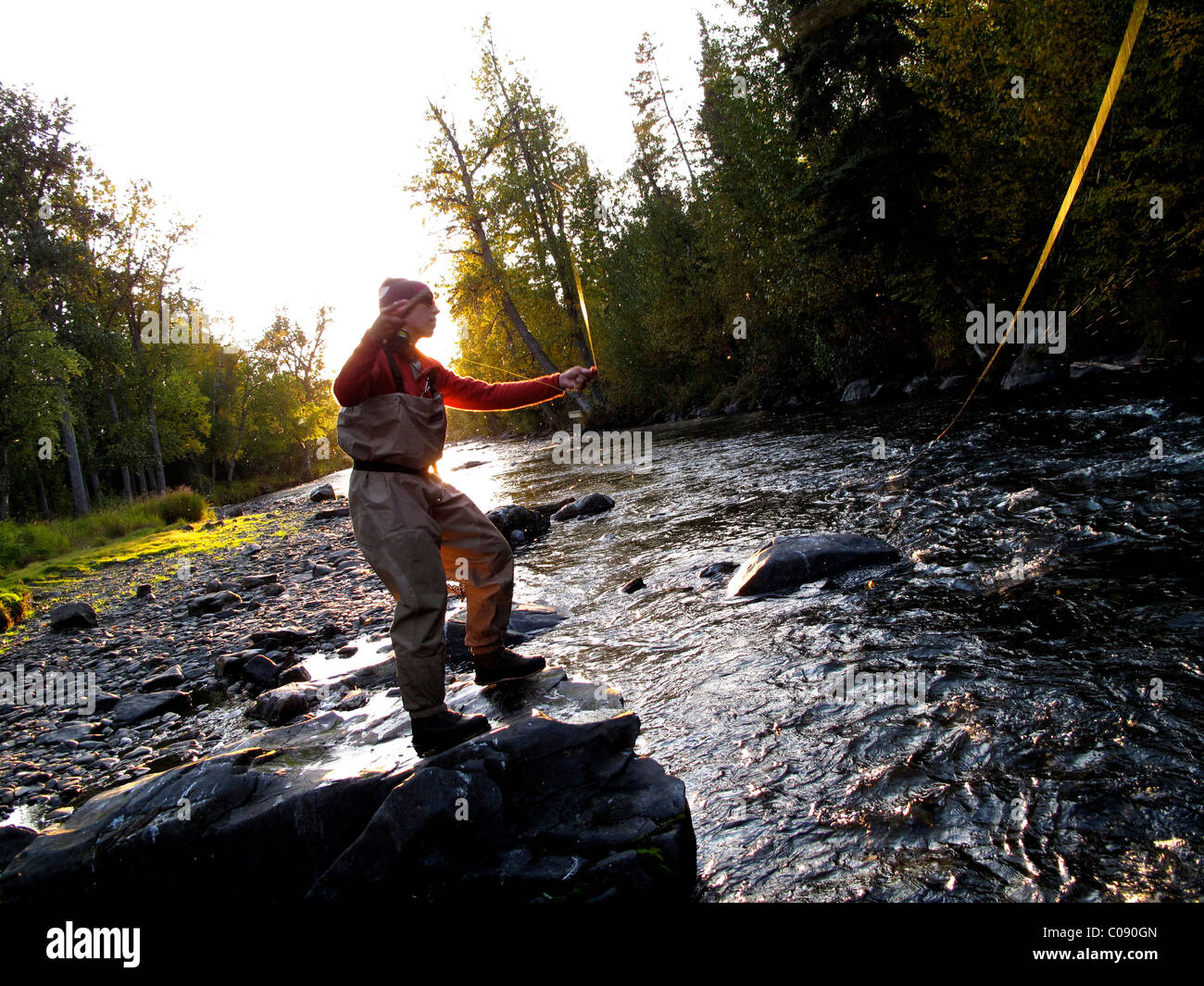 Woman fly fishing for Rainbow trout on the Russian River, Kenai Peninsula, Southcentral Alaska, Autumn - Stock Image