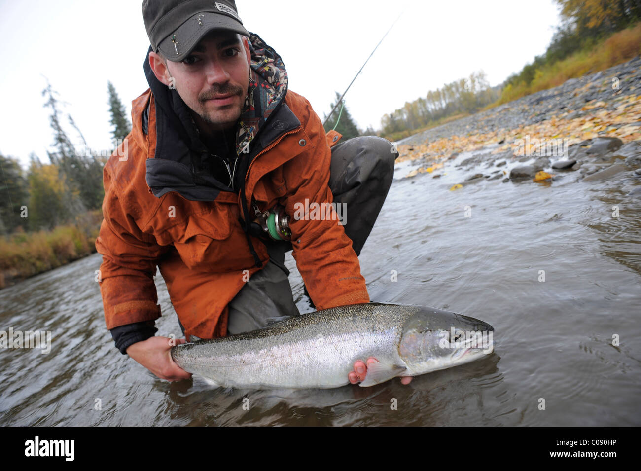 Fisherman kneeling in water to show off a wild Steelhead caught in Deep Creek, Kenai Peninsula, Southcentral Alaska, - Stock Image