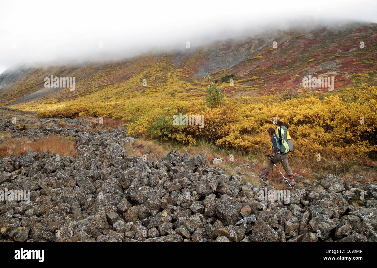 Female backpacker hiking to the 3,200 ft pass leading to the headwaters of Santucary River, Denali National Park, - Stock Image