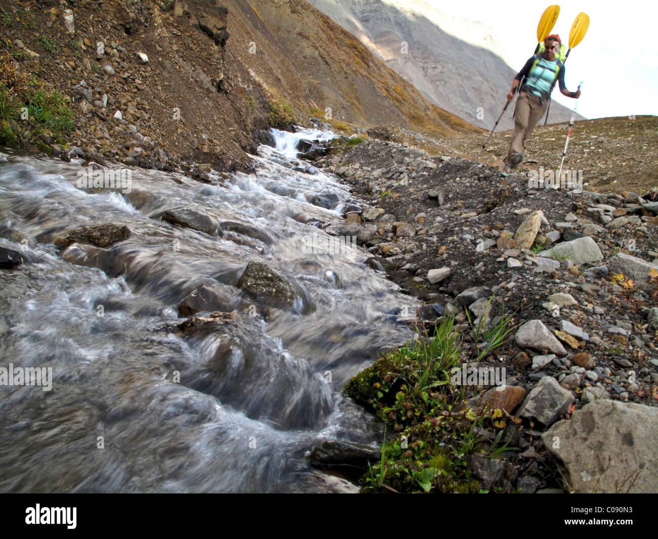 Female backpacker with a packraft along a creek and trail to the headwaters of Sanctuary River, Interior Alaska, - Stock Image