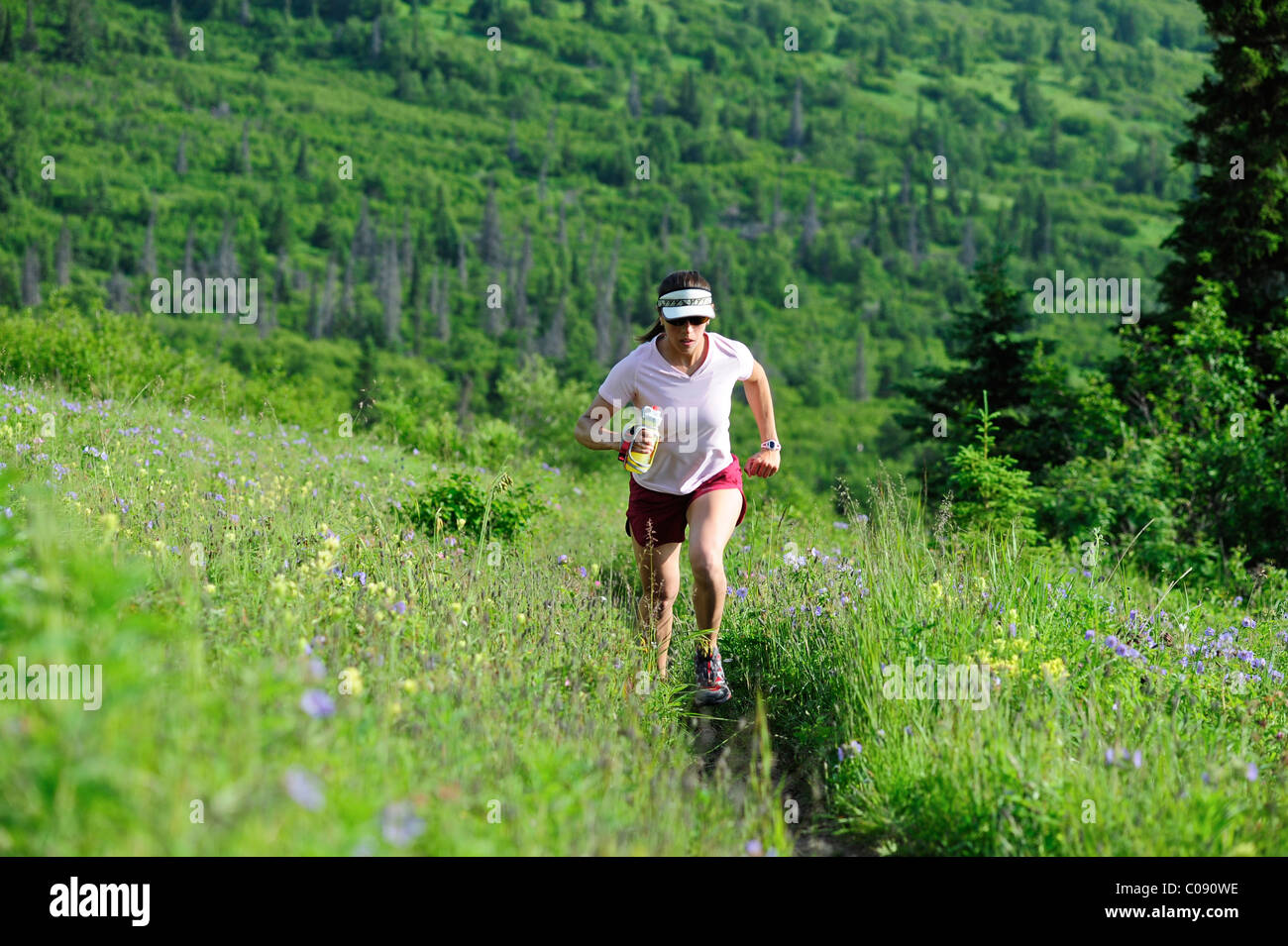 Female jogger runs the Near Point Trail in Chugach State Park near Anchorage, Southcentral Alaska, Summer - Stock Image