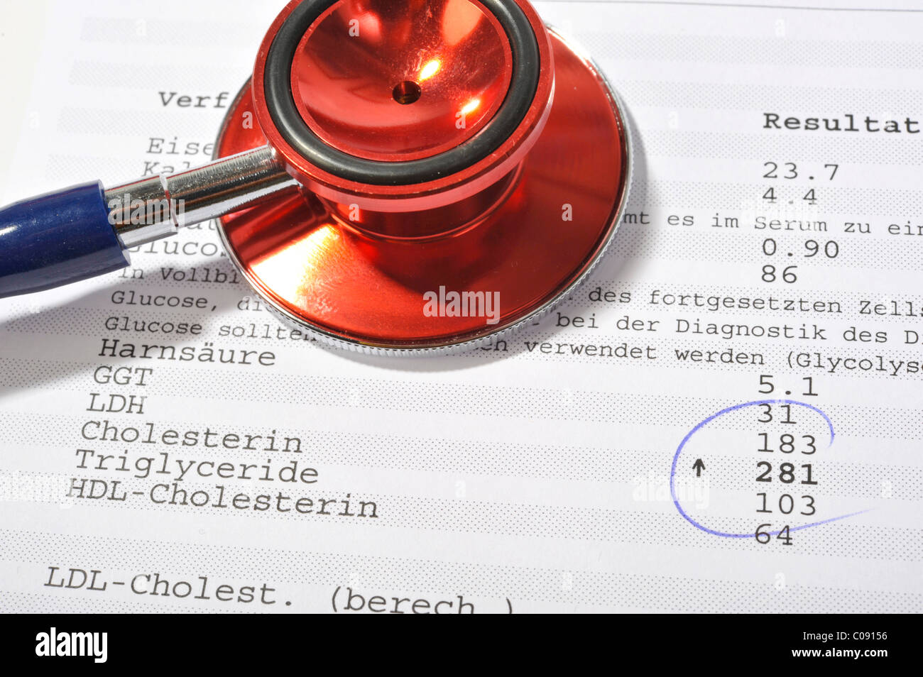 Examination results of a blood test with elevated cholesterol levels - Stock Image