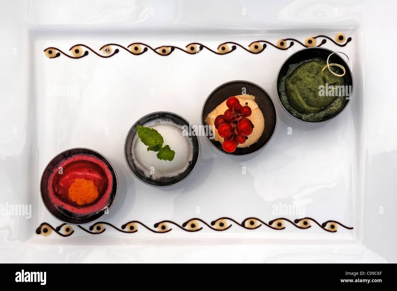 Various sorbets on a white plate, Haute Cuisine, Auberge de la Ferme Hueb, Mike Germershausen, Marckolsheim, Alsace, - Stock Image
