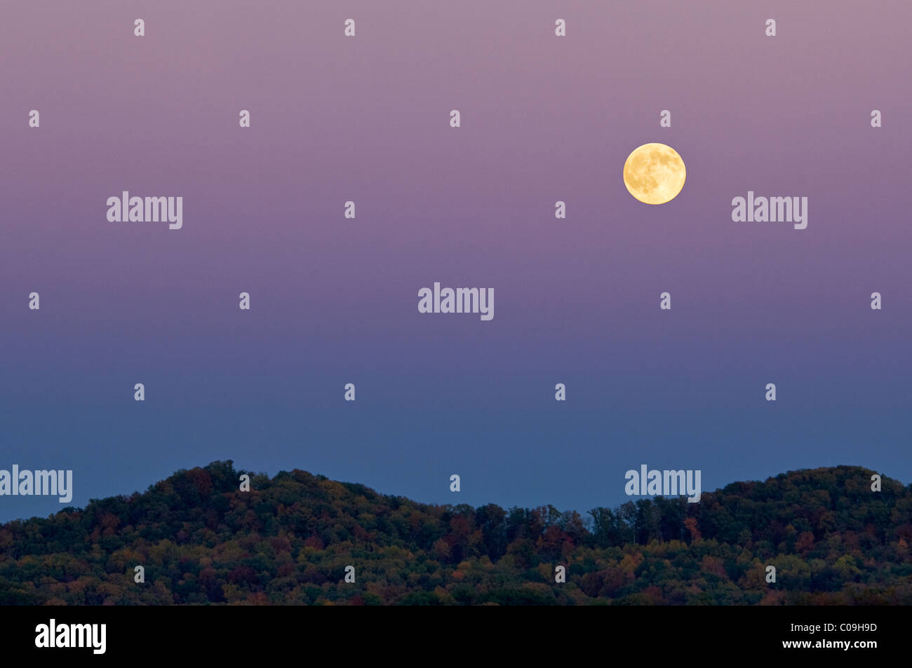 Moonrise Over Forested Hills in Daniel Boone National Forest in Whitley County, Kentucky - Stock Image