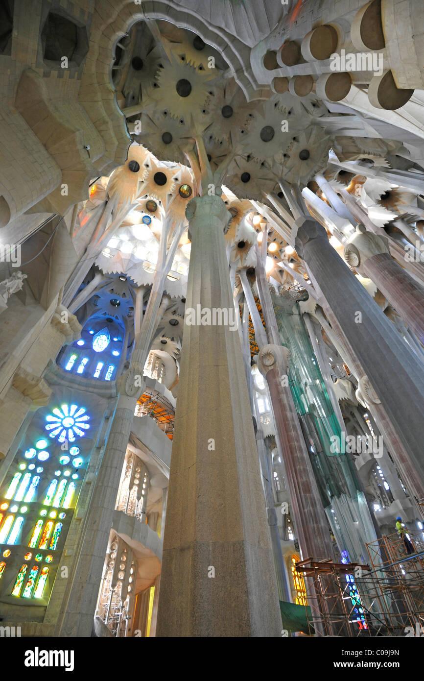 Tree-like columns in the partially finished interior, Basilica Temple Expiatori de la Sagrada Família, Expiatory - Stock Image