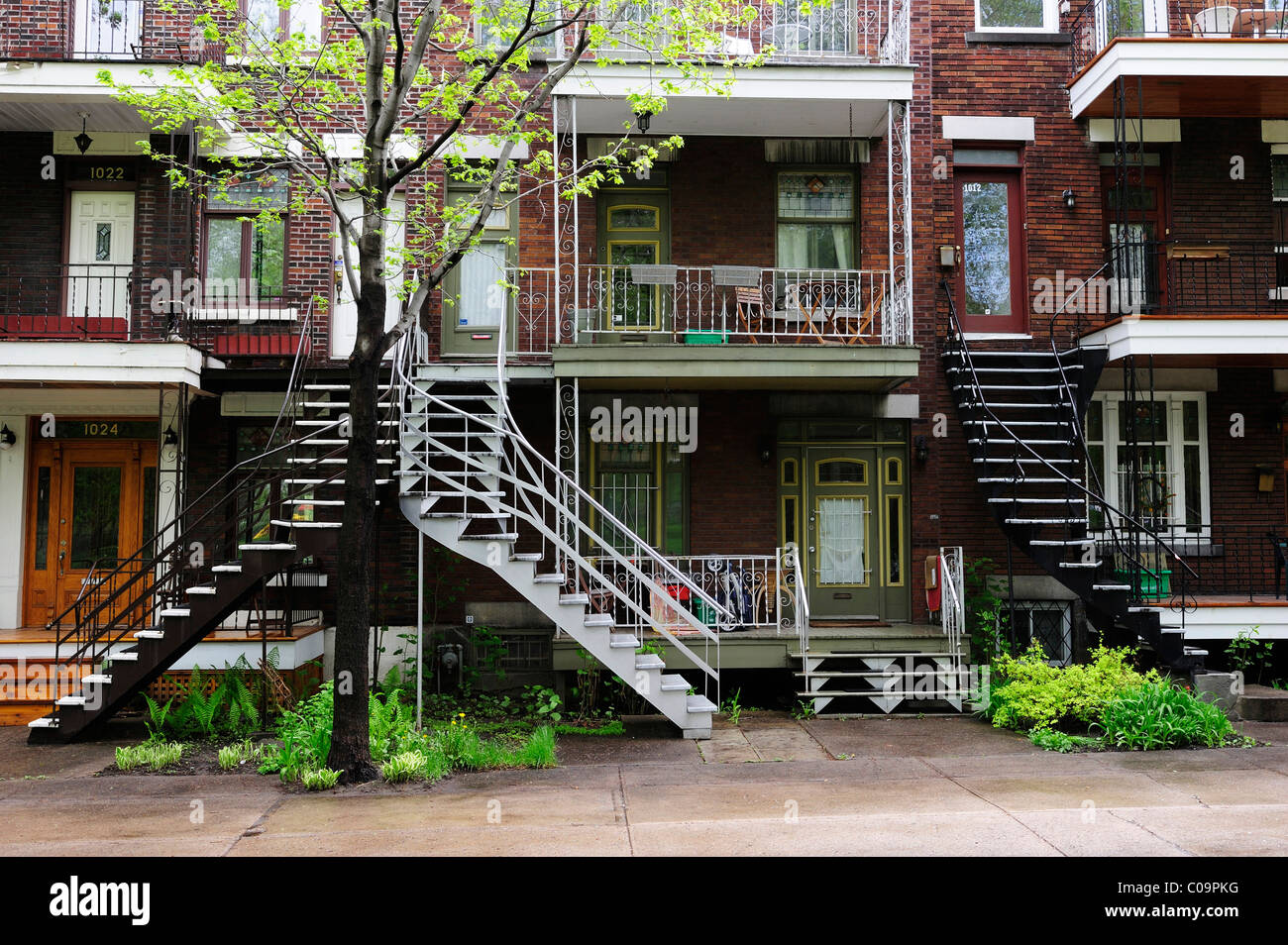 Typical houses with staircases to the first floor in Montreal, Quebec, Canada - Stock Image