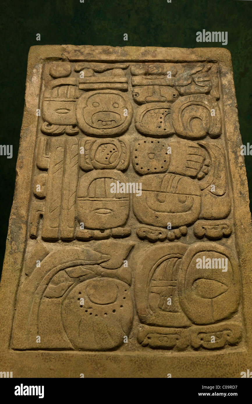 Maya glyph text on the Lapida Dupaix found at the Mayan site of Palenque, Chiapas. National Museum of Anthropology, - Stock Image