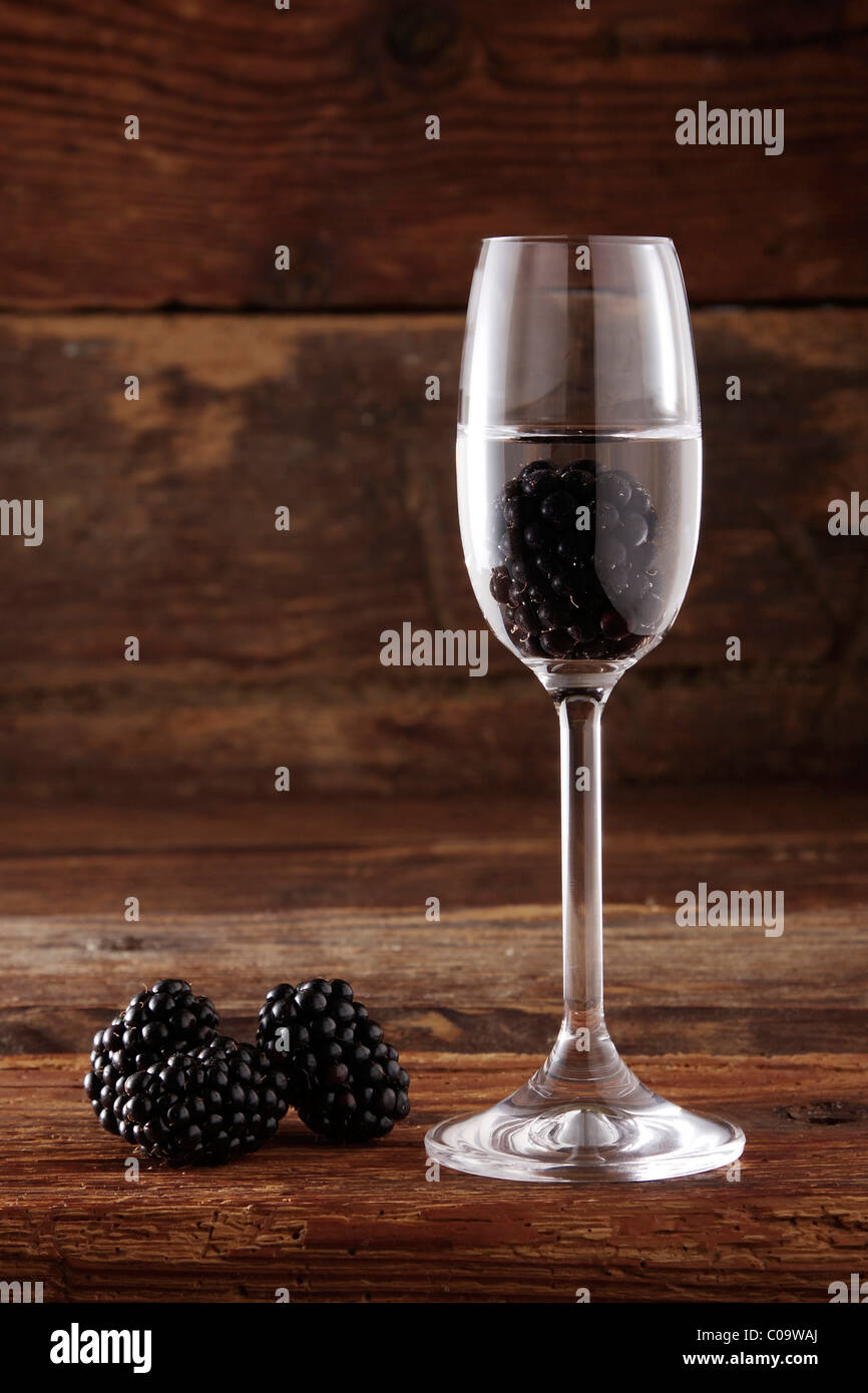 Glass of Blackberry schnapps with Blackberries (Rubus sectio Rubus) in front of rustic wood - Stock Image